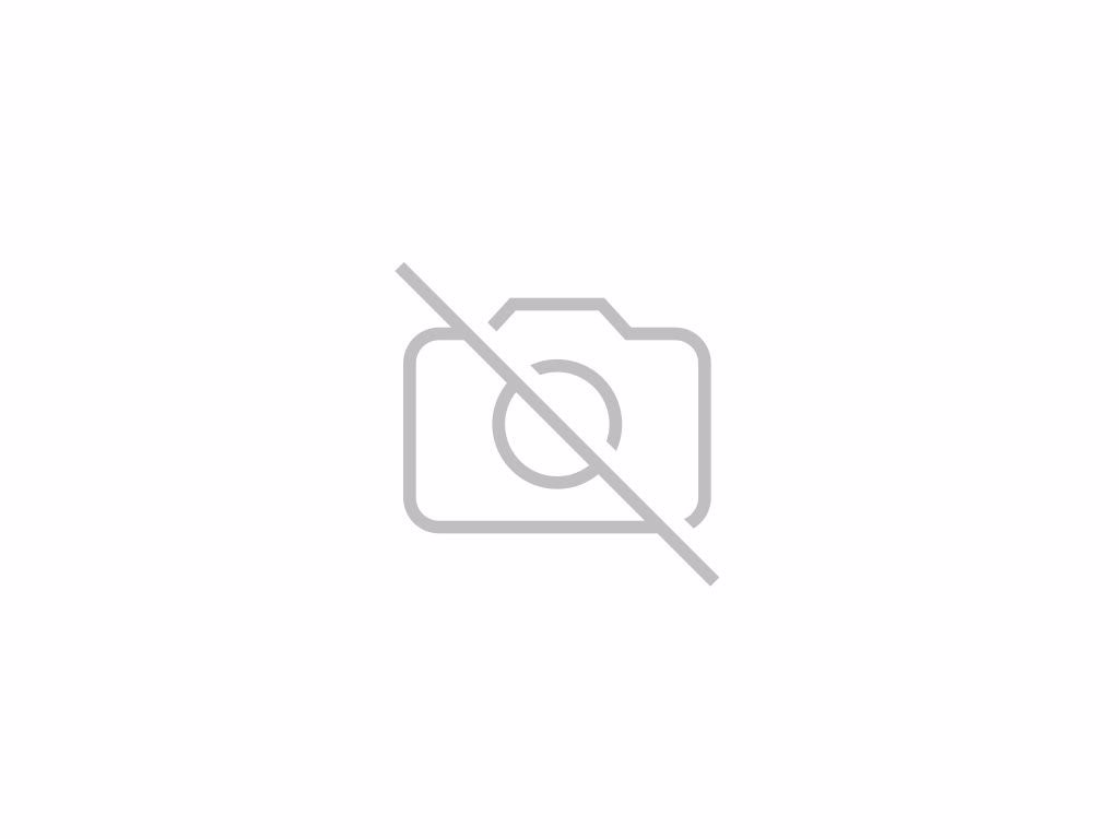 SEAT Ibiza 1.0 TSI 110 FR 5dr DSG